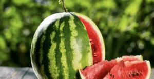 O απλός και αλάνθαστος τρόπος να ξεχωρίσεις ένα γινωμένο καρπούζι σε δευτερόλεπτα