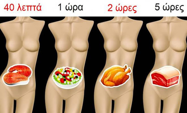 Πόσο Χρόνο χρειάζονται διάφορες Τροφές να Χωνευτούν και ΓΙΑΤΙ είναι σημαντικό να Γνωρίζουμε
