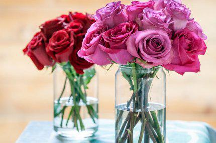 Κρατήστε φρέσκα τα λουλούδια σας.