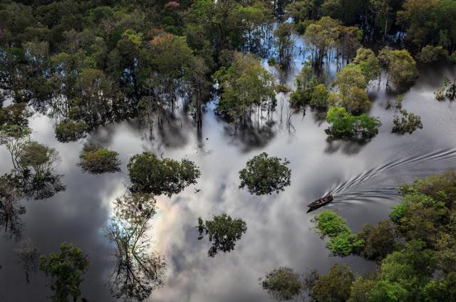 20 τοπία στον κόσμο Εθνικό πάρκο Αμαζονίου, Βραζιλία