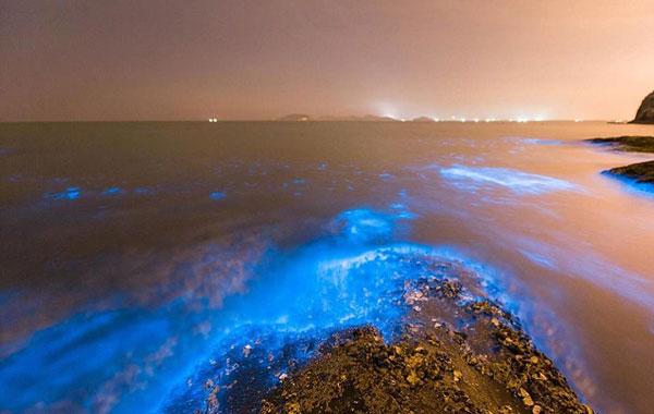 Η θάλασσα στην πόλη Dalian στην ανατολική Κίνα φωσφορίζει