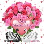 Happy Valentine's Day Pics For Love