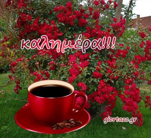 Καλημέρα Με Όμορφα Ανοιξιάτικα Τοπία καφές δέντρο