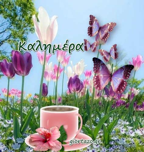 Καλημέρα Με Όμορφα Ανοιξιάτικα Τοπία καφές λουλούδια πεταλούδες