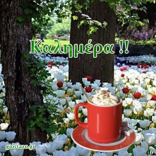 Τοπία καφές