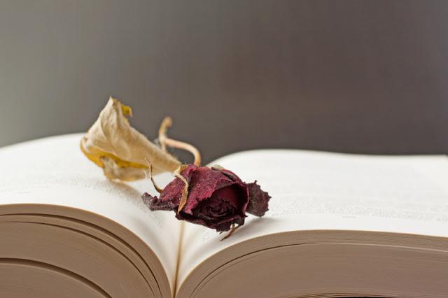 Αποξηραμένα λουλούδια σε βιβλίο