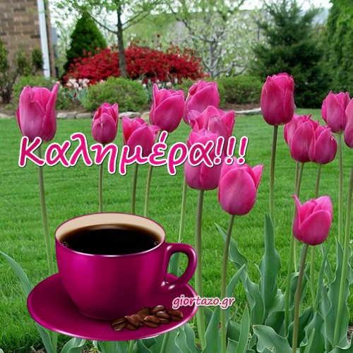 Μια Γλυκιά Καλημέρα