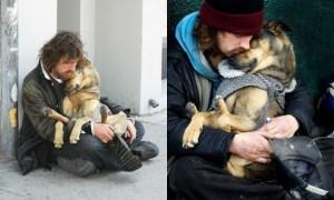 Read more about the article Πιστοί σκύλοι που αποδεικνύουν ότι είναι οι καλύτεροι φίλοι του ανθρώπου ακόμα και στις δύσκολες ώρες…