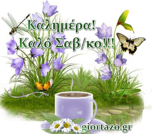 καλημέρα καφές πεταλούδα λουλούδια