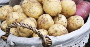 SUPER Δίαιτα με γιαούρτι και πατάτες – Σε 8 μέρες 8 κιλά!