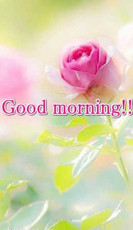 Good Morning With Smile