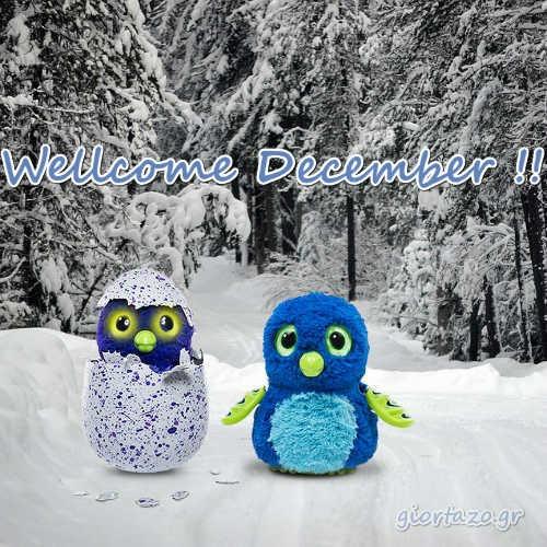 Wellcome December