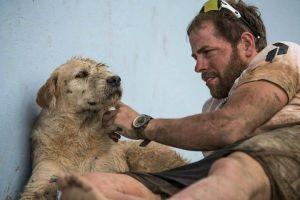 Read more about the article Μια απλή πράξη καλοσύνης-Ο Arthur είχε επιτέλους βρει την «αγέλη» του