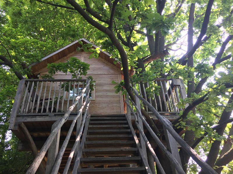 Una casa sull'albero: le più belle location in Italia e nel mondo