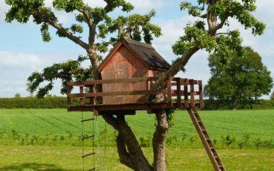 Tree Village – Claut (PN)