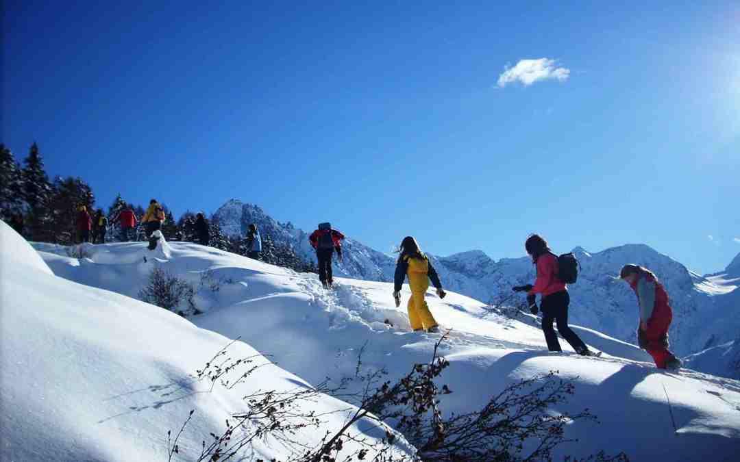 Parco dell'Adamello a febbraio: trekking su ciaspole in famiglia