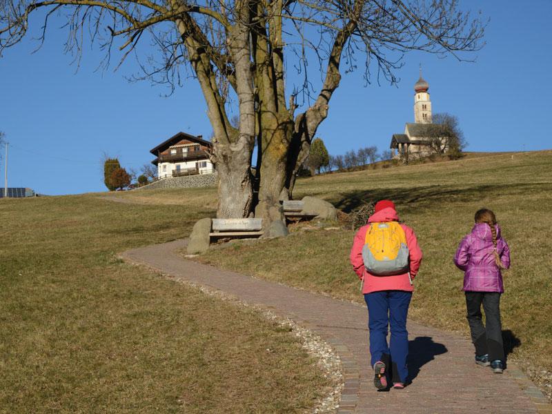 """Alpe di Siusi, un altopiano """"stregato"""" e family"""