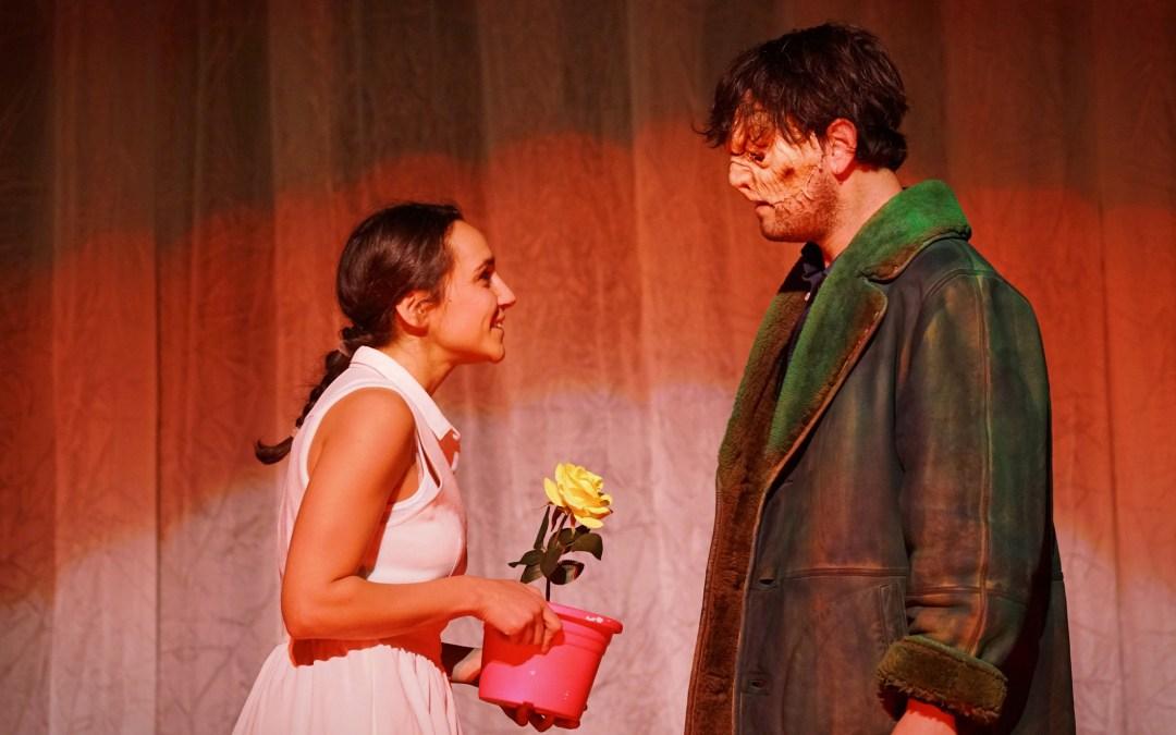 Uno spettacolo kids e family in Teatro Carignano a febbraio