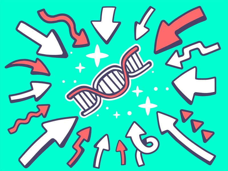 Diagnosi prenatale: i nuovi test di screening