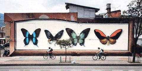 Libere e leggere come farfalle