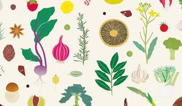 Mangia, leggi, impara: i primi libri di cucina