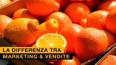 Marketing & Vendite