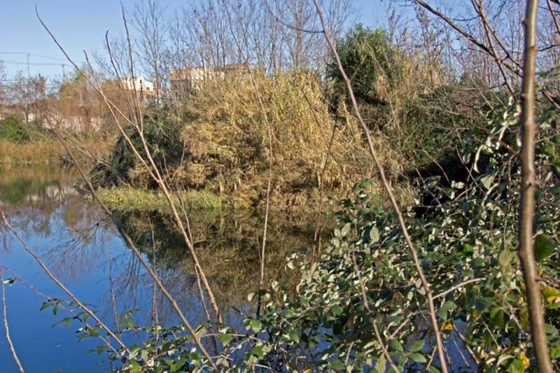 Lago Ex Snia Viscosa: una riserva nel cuore di Roma