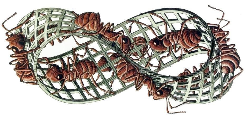 Escher - Il nastro di Moebius