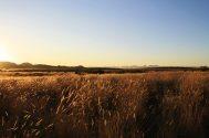 Sonnenuntergang über dem Western Enscarpement