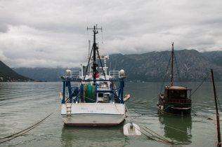 Boote in der Bucht von Kotor, Montenegro