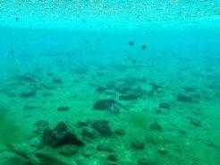 Unterwassertank von Mzima Springs im Tsavo West