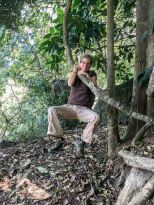 Regenwald in den Udzungwa Bergen Tansanias