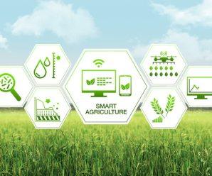 Logistica del food e trasformazione digitale: ecco le tecnologie del cambiamento
