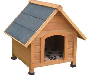 Tra le cucce per cani da esterno c'è quella che vi piace di più!