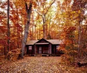 Come costruire delle casette in legno da giardino