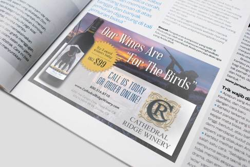 Ad for Shooting Sportsman Magazine
