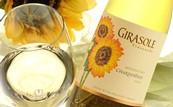 Girasole Chardonnay