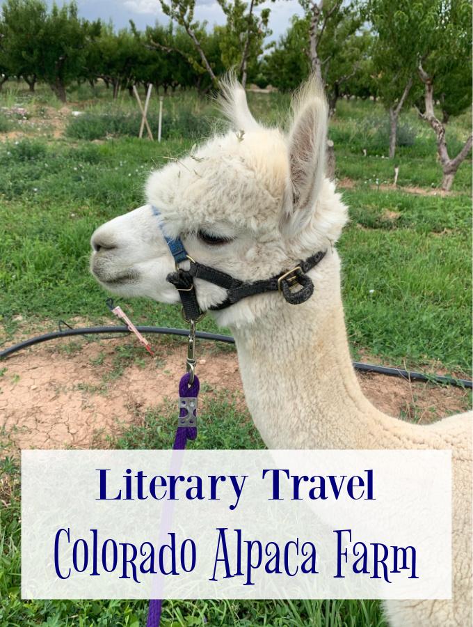 Alpaca farm, alpaca farm near me, alpaca farming, visit Colorado, things to see in Colorado, Colorado vacation spots, Colorado tourist attractions, attractions in Colorado, grand junction, grand junction colorado, agritourism, palisade colorado, palisade co, Literary travel, literary travel destinations, literary destinations
