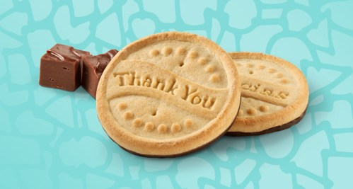 Image result for girl scout Thanks-A-Lot
