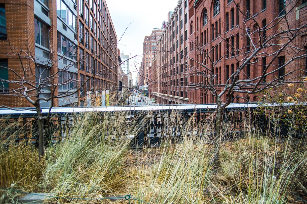 things to do in NYC - High Line Park