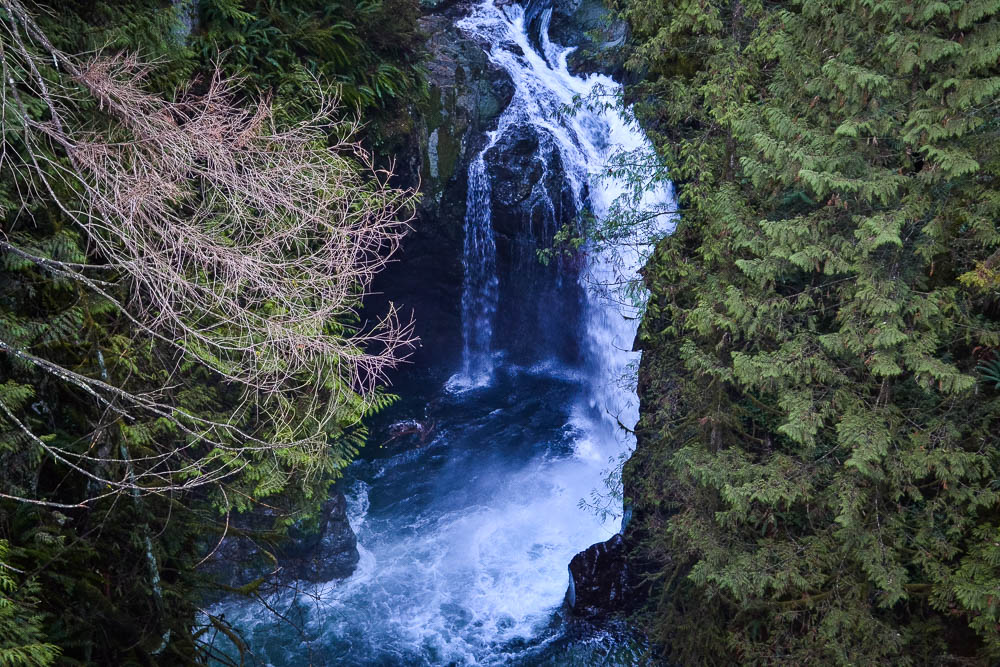 powerful waterfall plunging into the depths at lynn canyon north vancouver