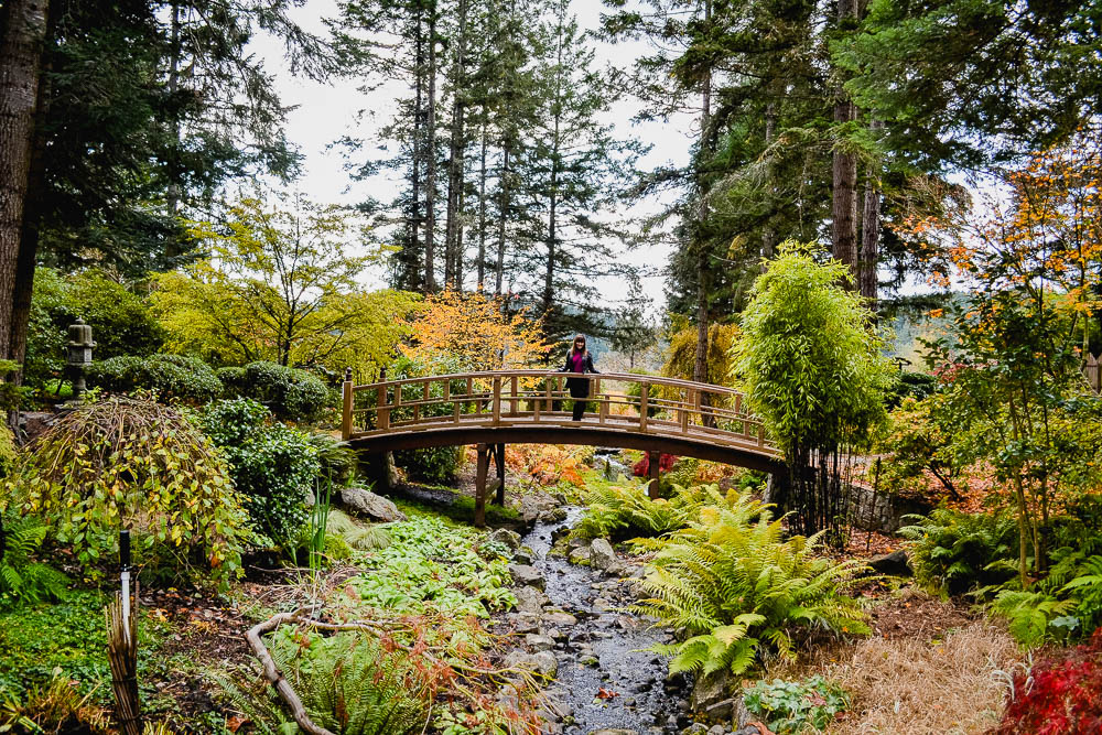 Van Dusen Botanical Garden is a world of colour
