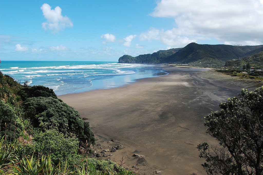 day trips from auckland - piha beach
