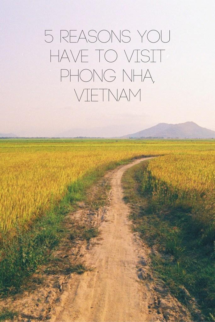 5 Reasons You Have to Visit Phong Nha, Vietnam
