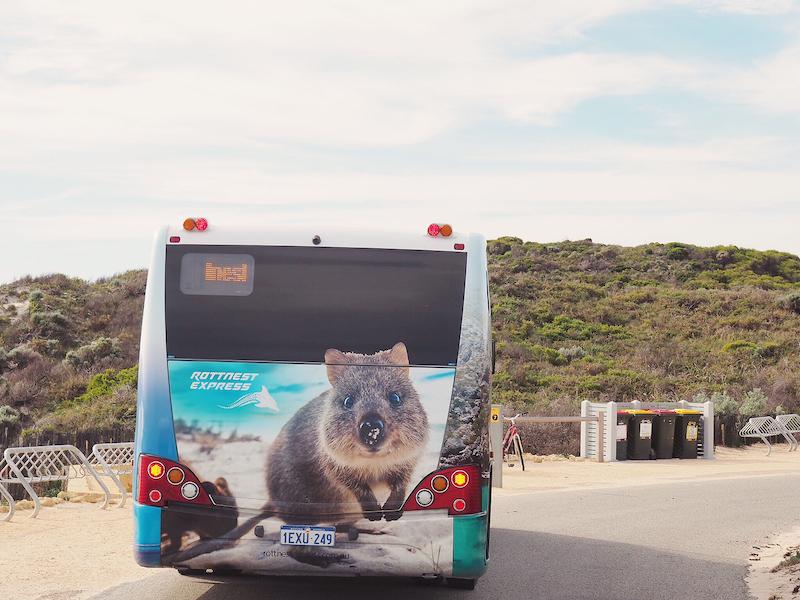 Island Explorer Bus Rottnest Island