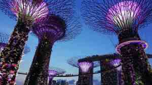 The exquisite Garden by the Bay in Singapore.