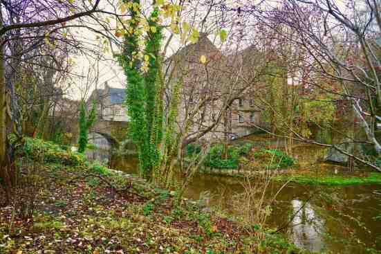 Some of the amazing views you'll see as you stroll along the Water of Leith Walkway.