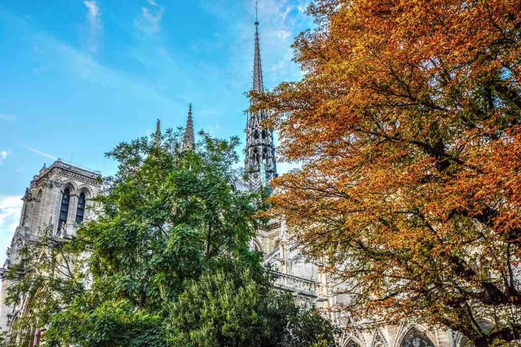 The exquisite fall foliage surrounding Notre Dame.