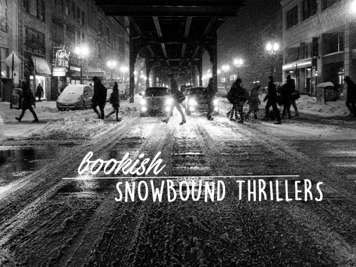 snowbound thriller