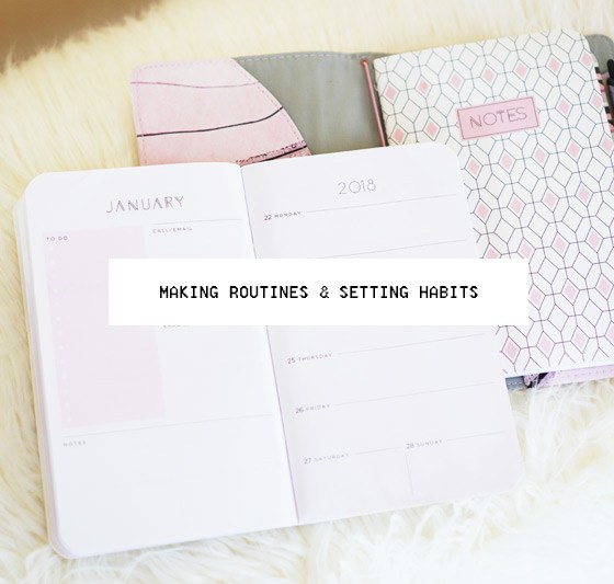 Routines and Plans